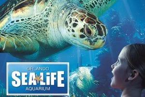 Orlando Sea Life Aquarium
