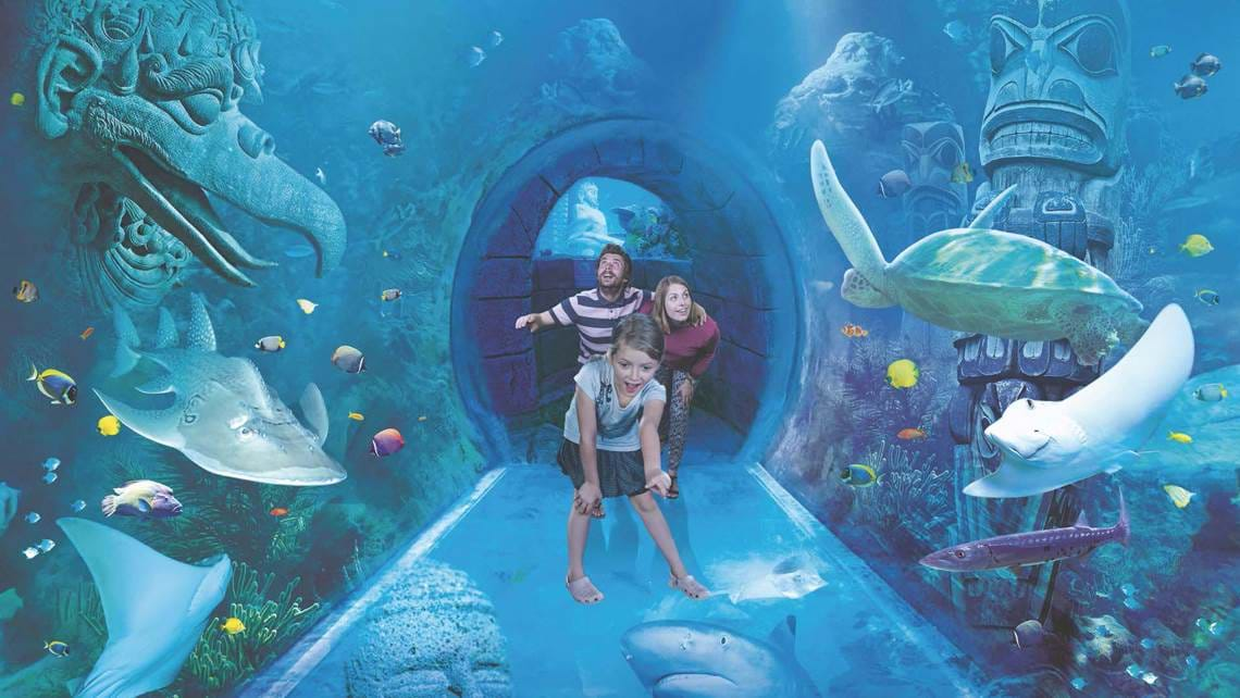 Tunnel in the Aquarium